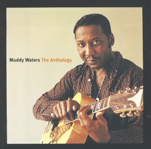 Muddy Waters, Sunnyland Slim Stuff You Gotta Watch cover
