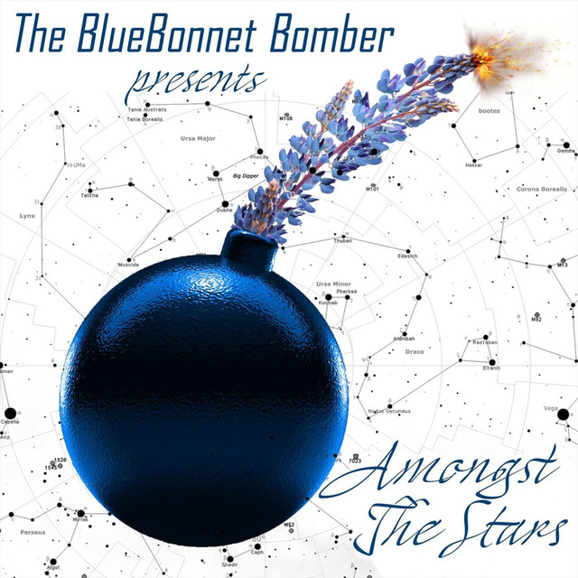Album cover for Amongst the Stars by The Bluebonnet Bomber
