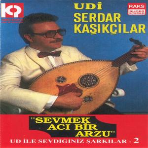 Ercan Irmak