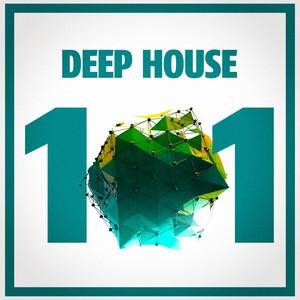 Deep House 101 album