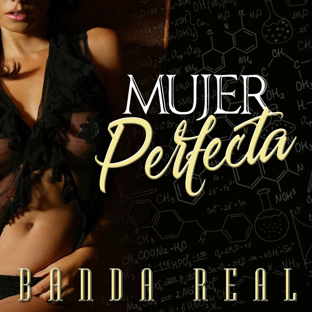 Mujer Perfecta