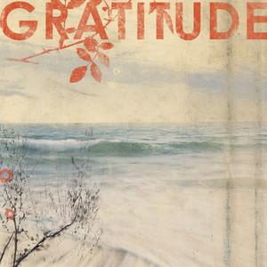 Gratitude  - Gratitude