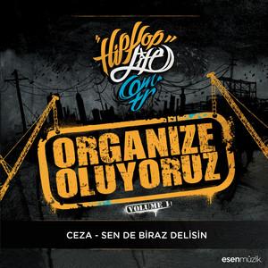 Sen De Biraz Delisin (Organize Oluyoruz Vol. 1) Albümü