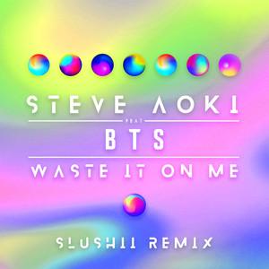 Waste It On Me (Slushii Remix) Albümü