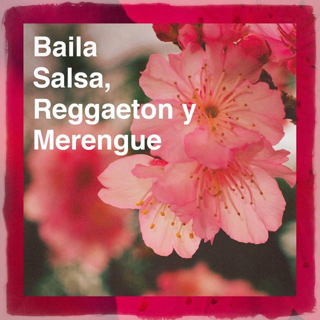 Baila Salsa, Reggaeton y Merengue