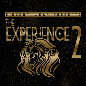Experience 2 Albumcover