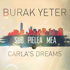 Sub Pielea Mea (feat. Carla's Dreams) Albümü