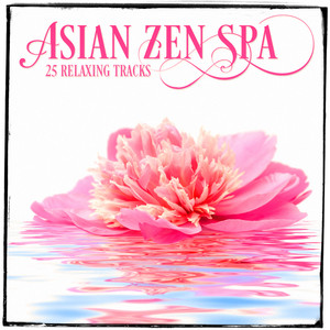 Relaxing Asian Music, Vol. 4 (25 Zen Music & Melodies for Spa Relaxation and Meditation) Albumcover
