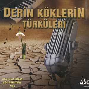 Derin Köklerin Türküleri Albümü
