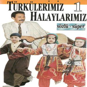 Türkülerimiz Halaylarımız, Vol.1 (Sözlü Süper)