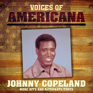 Voices Of Americana: More Hits and Alternate Takes album