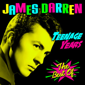 Teenage Years - The Best Of album