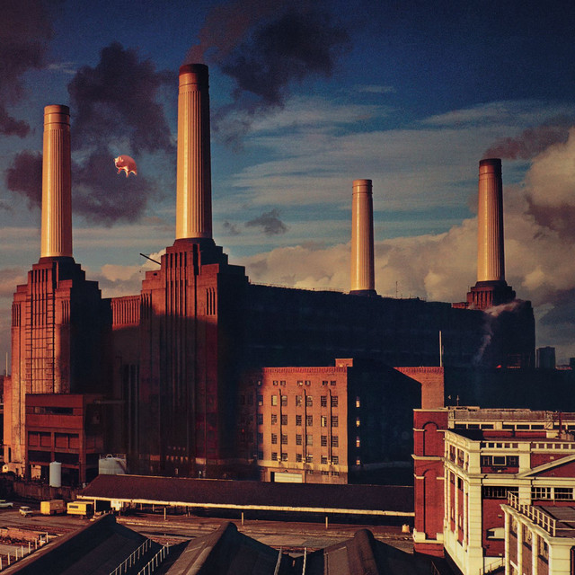 Animals (2011 Remastered Version) Albumcover