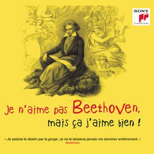 Je n'aime pas Beethoven, mais ça j'aime bien ! Albümü