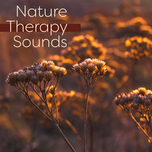 Nature Therapy Sounds – Music to Rest, Spirit Relaxation, Healing Waves Albümü