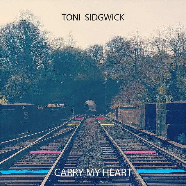 Image result for toni sidgwick carry my heart