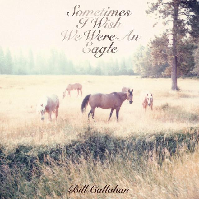 Skivomslag för Bill Callahan: Sometimes I Wish We Were An Eagle