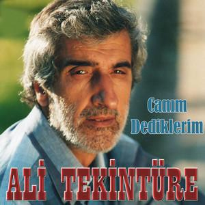 Ali Tekintüre
