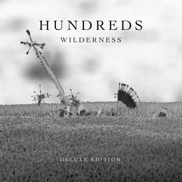 Album cover for Wilderness (Deluxe Edition) by Hundreds