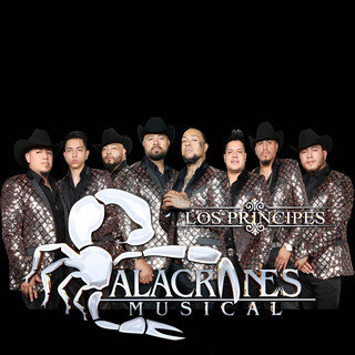 Picture of Alacranes Musical