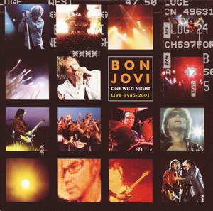 One Wild Night 2001 Albumcover