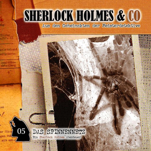 Folge 5: Das Spinnennetz Cover