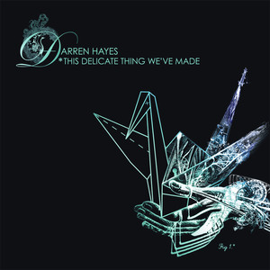This Delicate Thing We've Made - Darren Hayes