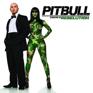 Pitbull, Storm Triumph cover