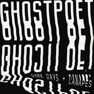 Dark Days + Canapés album
