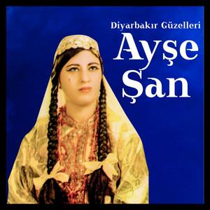 Diyarbakır Güzelleri Albümü