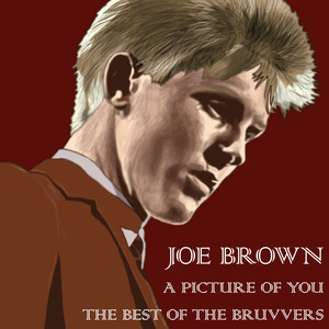 Joe Brown A Picture Of You - The Best Of The Bruvvers album
