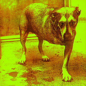 Alice In Chains Albumcover