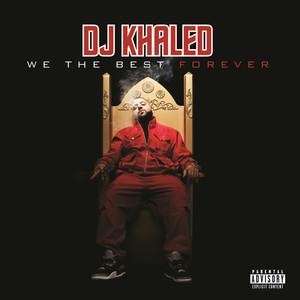 DJ Khaled, Ludacris, Busta Rhymes, Twista, T‐Pain, Mavado, Birdman, Ace Hood, Fat Joe, Jadakiss, Bun B, The Game, Waka Flocka Flame Welcome To My Hood - Remix cover