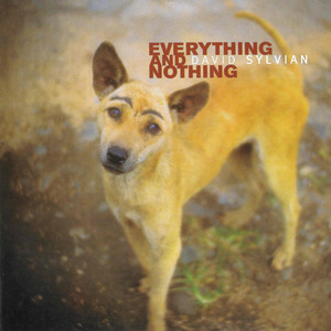 Everything & Nothing album
