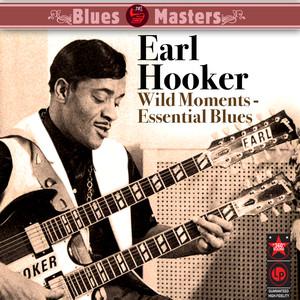 Wild Moments - Essential Blues album