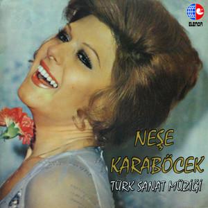Türk Sanat Müziği Albümü