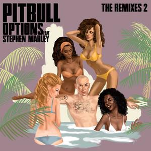 Options (The Remixes 2) Albümü