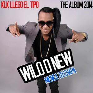 Wilo D New