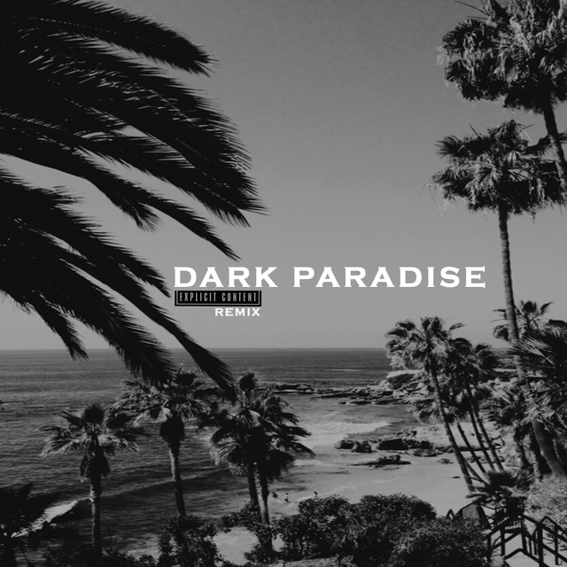 Dark Paradise (Remix)