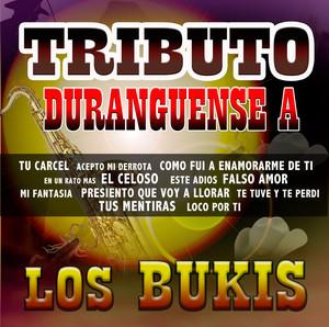 Tributo Duranguense album
