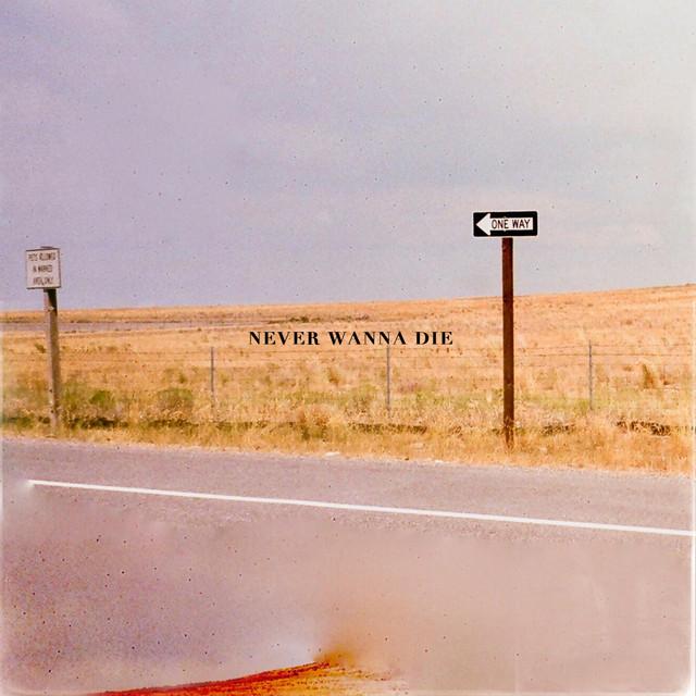 Never Wanna Die