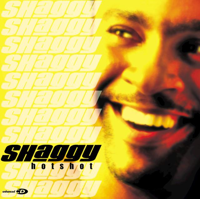 Shaggy Hot Shot album cover