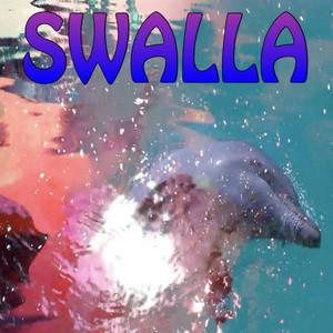 Swalla Workout Remix Albümü
