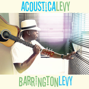 Acousticalevy