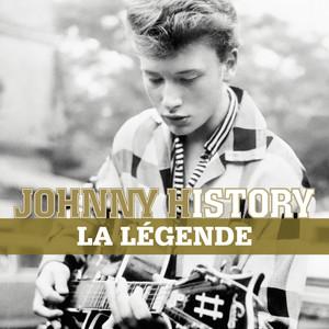 Johnny Hallyday Je ne danserai plus jamais cover