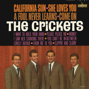California Sun - She Loves You album