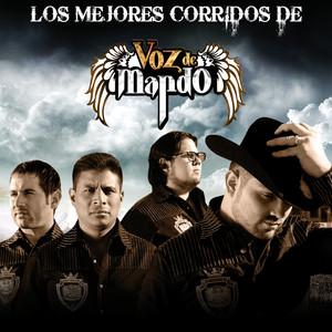 Los Mejores Corridos De Albumcover