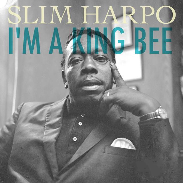 singles harpo