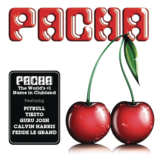 Various Artists Pacha Año 2010 album cover