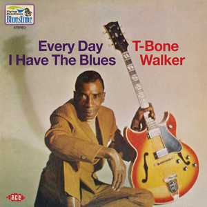 T‐Bone Walker Every Day I Have the Blues cover
